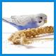 Сухой корм для птиц