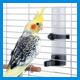 Поилки для птиц