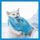 Препараты для лечения опорно-двигательного аппарата кошек