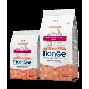 Monge сухой корм для взрослых собак весом до 2 кг c лососем, рисом, картофелем