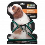 Комплект шлейка и поводок для щенка из капрона, 280-340*85мм, 10*1300мм