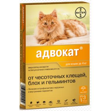 Адвокат для кошек до 4кг .