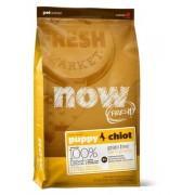 Корм NOW FRESH беззерновой для щенков, с индейкой, уткой и овощами, Fresh Puppy Recipe Grain Free