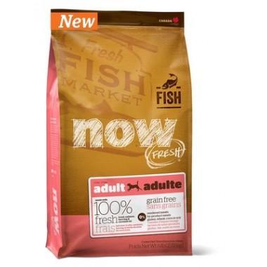 NOW Беззерновой для взрослых собак с форелью и лососем для чувствительного пищеварения 2,72 кг