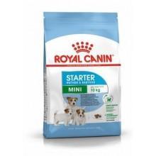 Royal Canin Mini Starter для щенков малых пород, беременных и кормящих сук