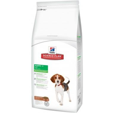 Hill`s Science Plan Puppy Lamb & Rice - корм для щенков мелких и средних пород с ягненком с рисом 1 кг.