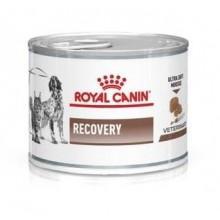 """Консервы """"Royal Canin Recovery"""" при проблемах с почками (мусс)"""